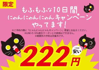 2019.11.にゃんにゃんにゃんキャンペーン